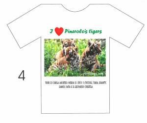 tigre 4