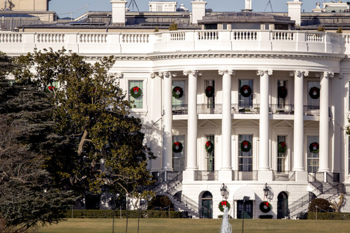 White House Magnolia Tree_767183