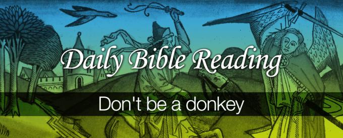 Dont-be-a-donkey