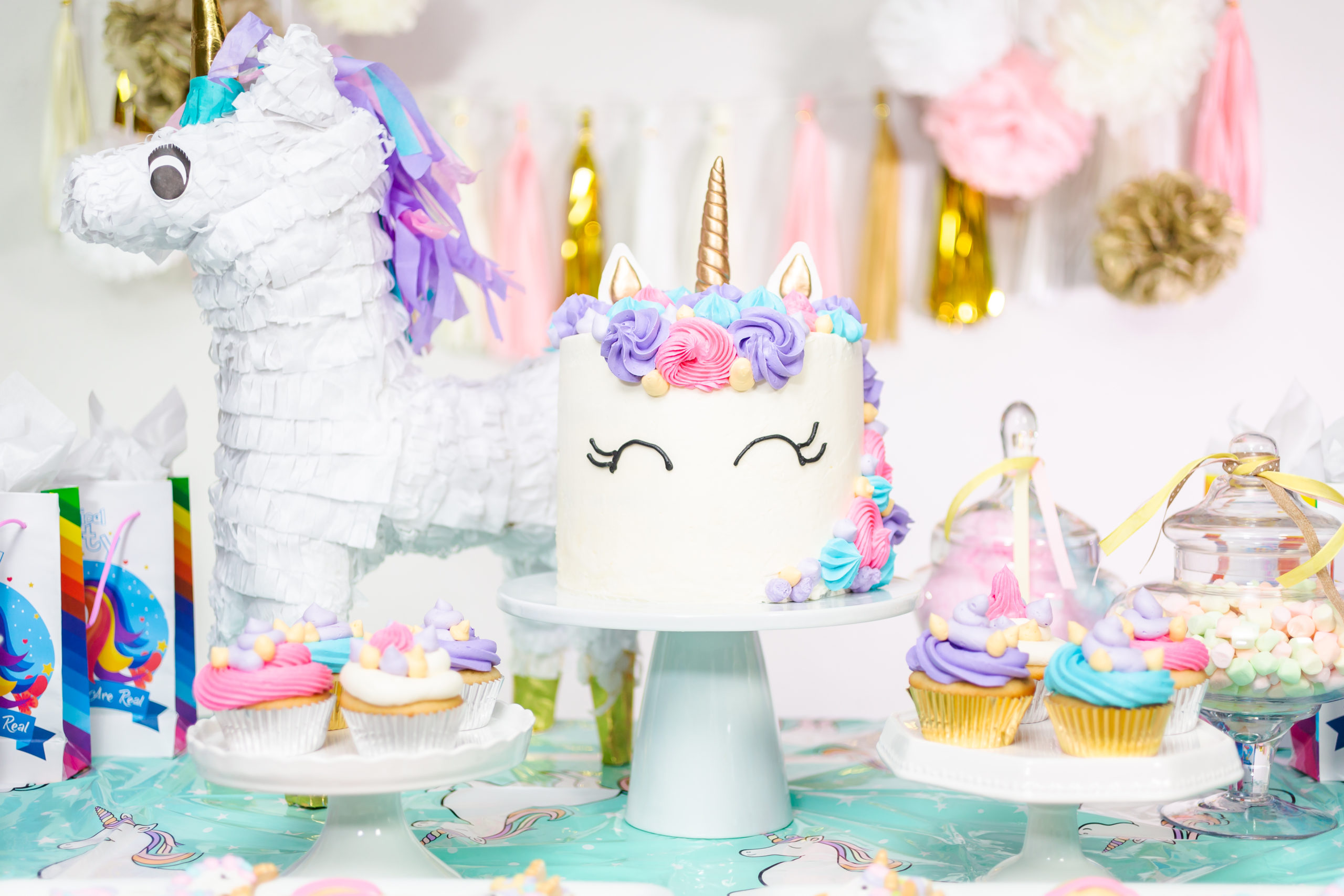 The Unicorn Birthday Party