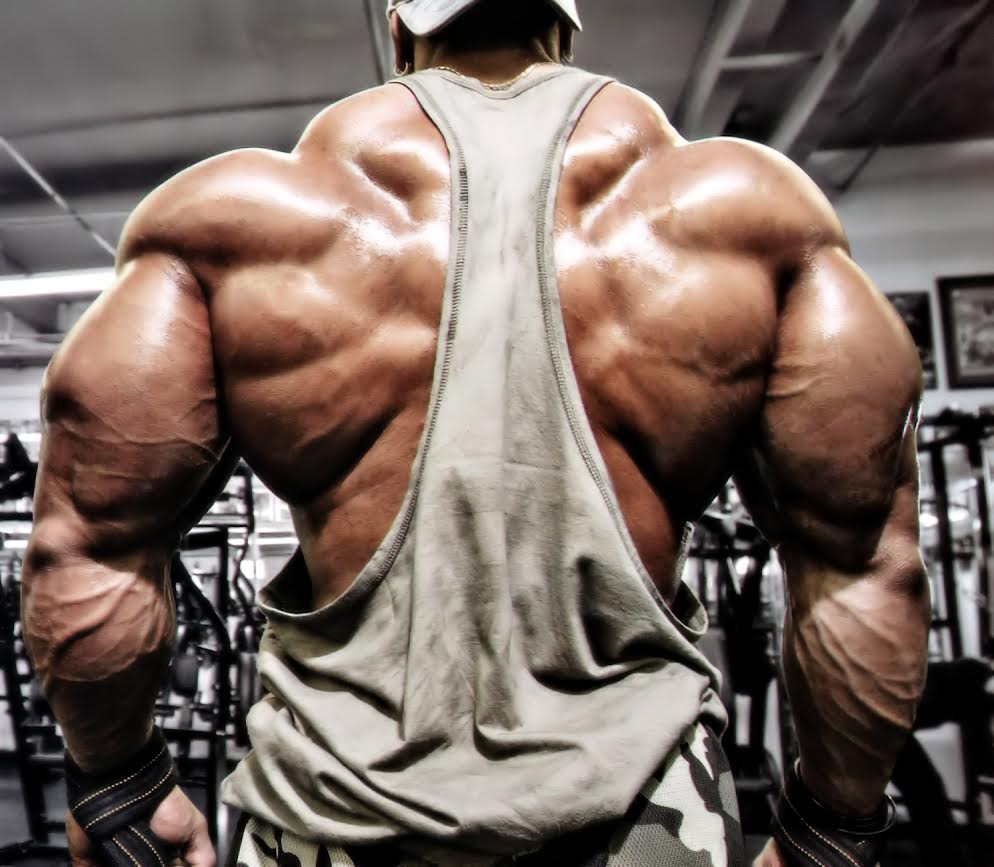 Very muscular guy with his back to us