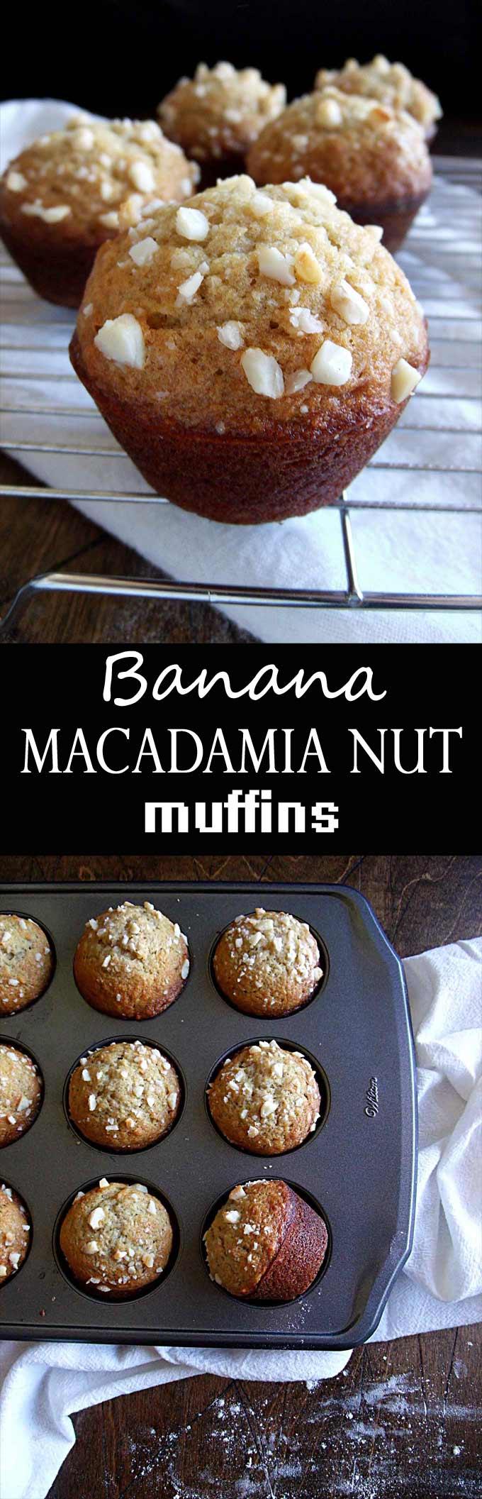 Banana macadamia nut muffins wyldflour banana macadamia nut muffin inspired by the muffins at huggos in kona hawaii forumfinder Images