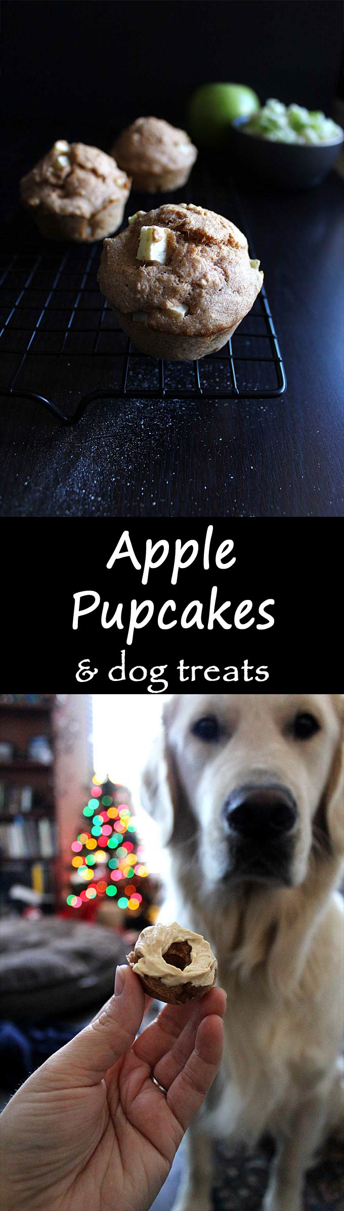 Apple Pupcakes with Peanut Butter Yogurt Frosting! a natural treat for all the pups! Can also be baked into mini donuts!