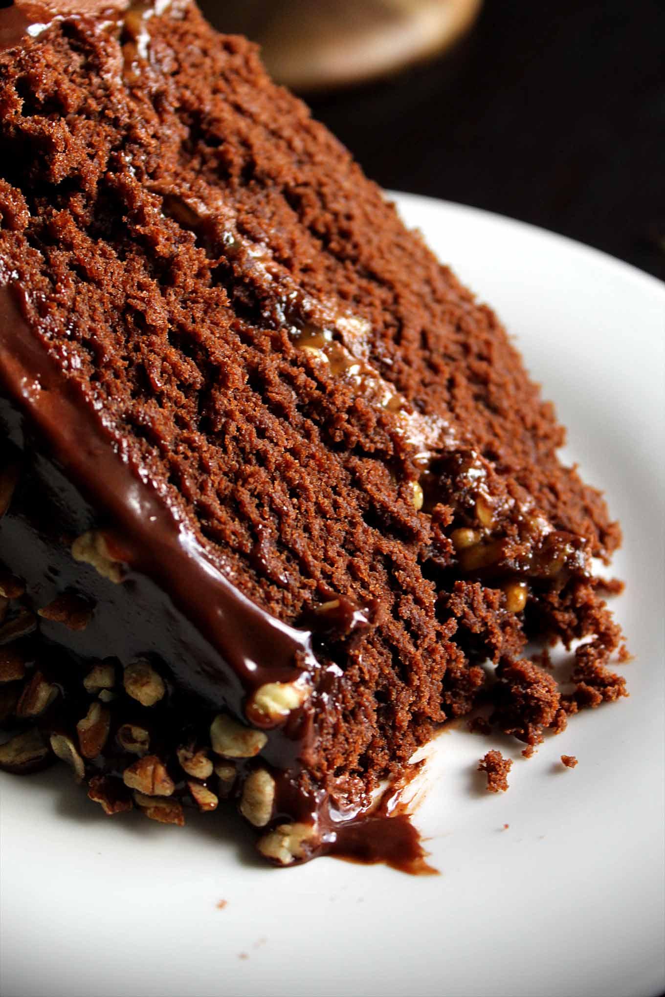 Chocolate Turtle Cake with Caramel Pecans and Chocolate Ganache ...