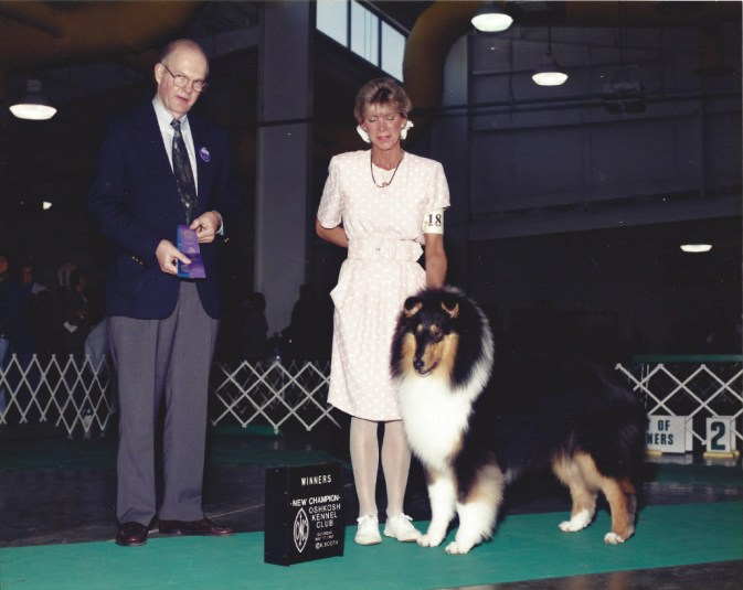 Tri-Color Collie Puppy - Ch. Highcroft Wyndlair Patriot