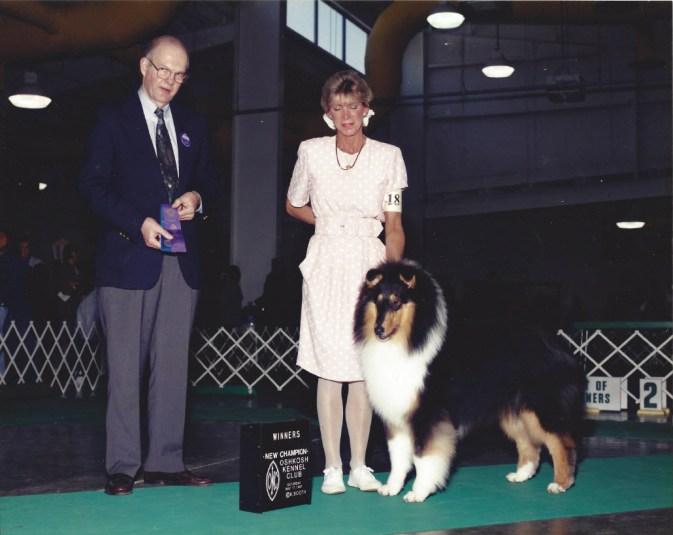Tri-Color Collie Puppy - Ch. Highcroft Wyndlair Patriot