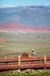 Starr Miller, a cowboy at Arapaho Ranch in Wyoming rides along a corral fence on part of the ranch