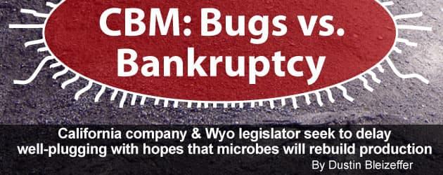 CBM: Bugs vs. Bankruptcy