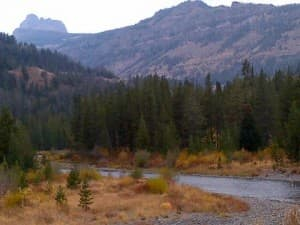 The Shoshone was one of four forests studied to help land managersdeal with climate change.