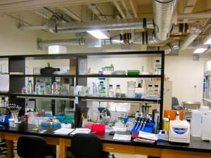 A lab in the Biological Sciences building. Many of the building's interior finishes and configuration haven't changed significantly since 1969, with the exception of the air handling system of the building that is in process of being replaced.  (Gregory Nickerson/WyoFile — click to enlarge)