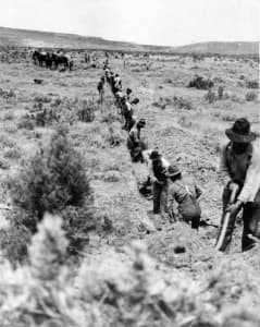 Men dig a pipeline trench by hand through Wyoming sagebrush in the early days in this undated photo. Wyoming State Archives.