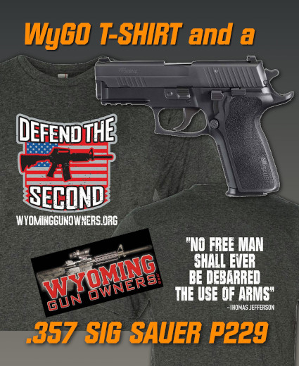 Oppose 'Red Flag Gun Seizures' and Win a SIG P229!