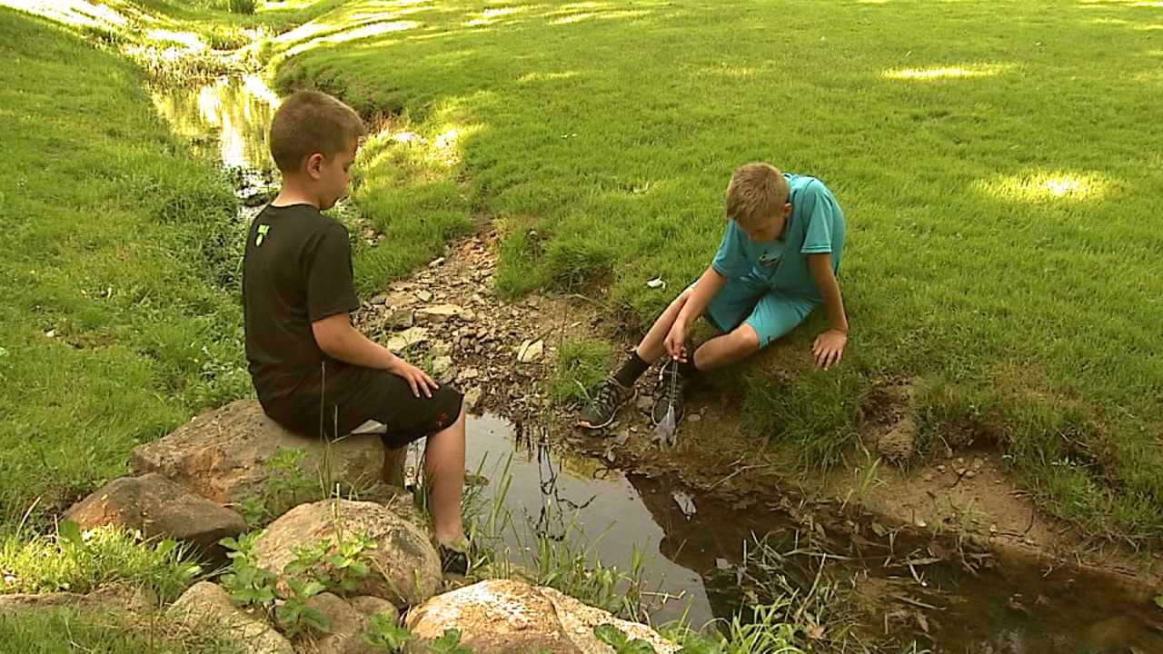 Kids playing in a creek outside