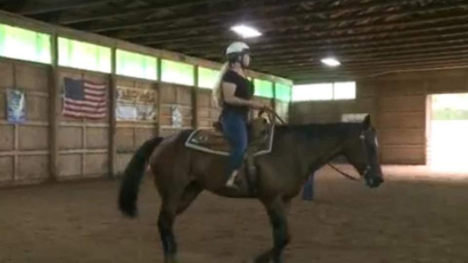 YSU Equestrian Class