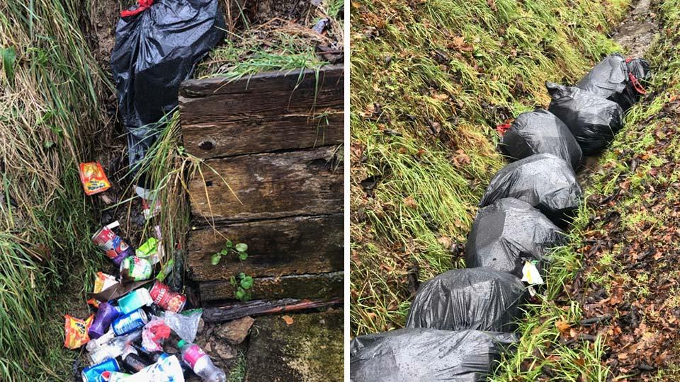 Trash in Salem along Egypt Road