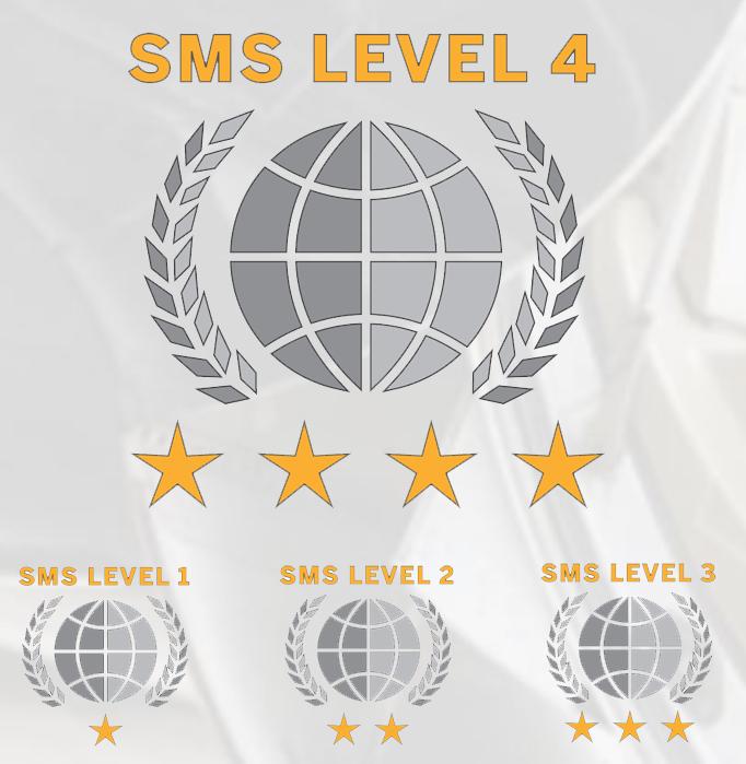 wyvern-sms-level-4