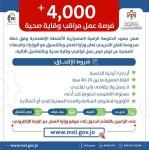 اعلنت وزارة العمل عن اكثر من 4000 فرصة عمل