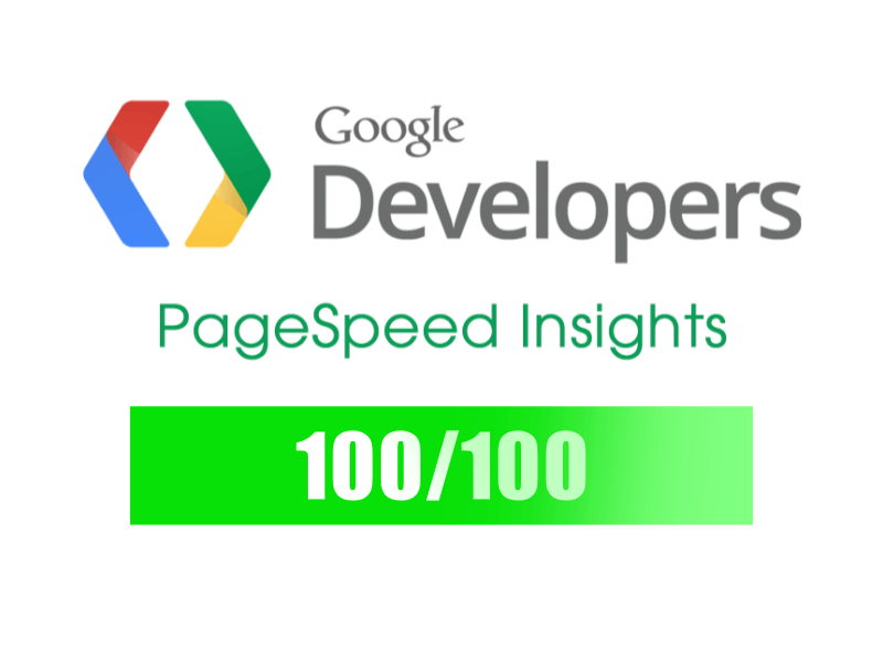 100/100 PageSpeed Insights