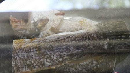 Gỏi đu đủ khô cá lóc nhậu ngon cuối tuần, Ẩm thực, am thuc, mon goi, goi du du kho ca loc, mon nhau, ca loc, mon ngon, mon ngon de lam, du du, bao
