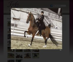 fineline-stables-website-3