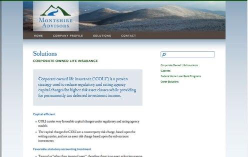 montshire-advisors-website-3