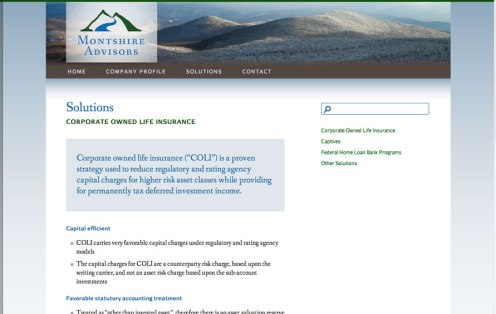 montshire-advisors-website-3