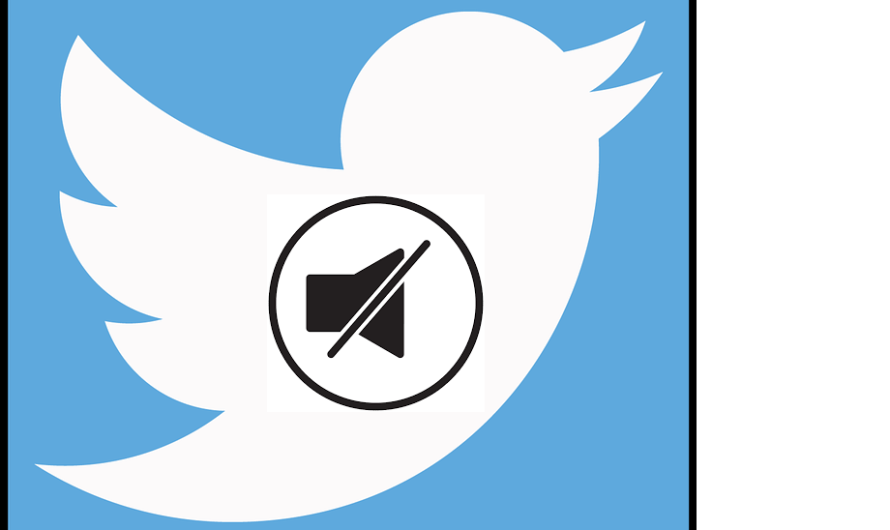 Avoid Strangers and Trolls with the Twitter New User Mute Option