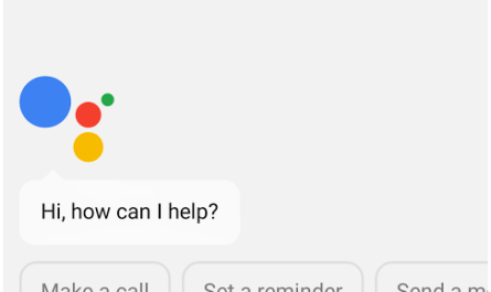 Google Assistant support