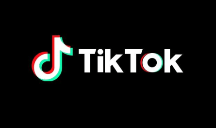 TikTok ecommerce and bio links
