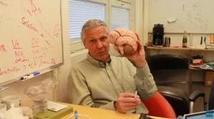 neurônios aprendizagem