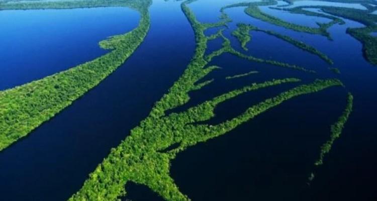 Amazônia: Bem Comum da Terra e daHumanidade