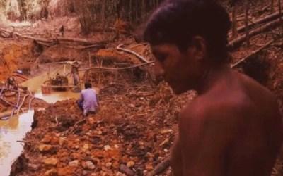 Amazônia: Corrida do ouro ameaça Terras Indígenas e Florestas