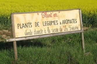 Plants de Legumes France