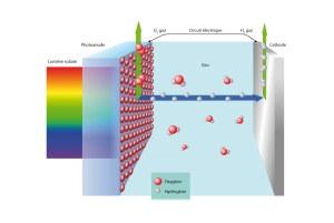 De la lumière à l'hydrogène. Image: Empa.
