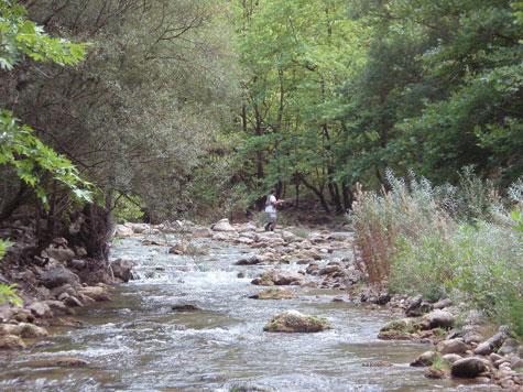 Καρπενησιώτης Ποταμός