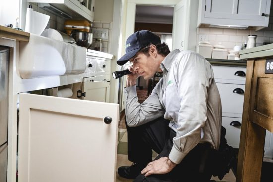home inspector inspecting cabinet | Xcellence Inspection Services | Pests are hiding in your home Chicago