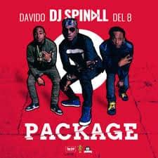 Davido - Package Ft. DJ Spinall & Del B