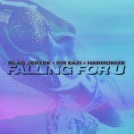 Blaq Jerzee – Falling For U ft. Mr Eazi, Harmonize