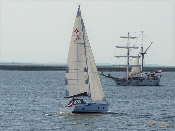 Luxury Sailing on Ijsselmeer