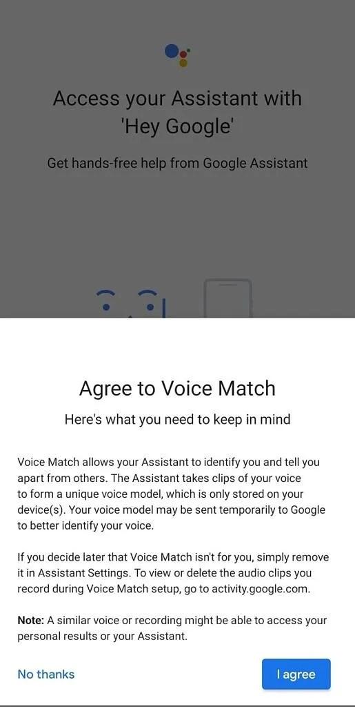 Google Assistant - Voice Match permission