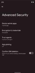 Advanced Security settings in Android 12