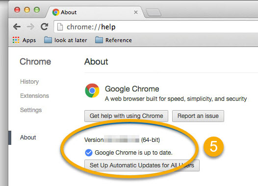 Update Chrome Browser