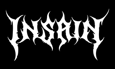 INSAIN [logo]