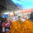 Comerciantes de flor de muerto consideran que el precio es inestable