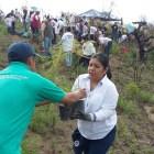 """Reforestan con más de 4 mil árboles paraje """"Las Antenas"""""""