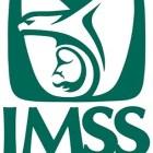 IMSS hará frente a la influenza