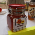 Buscan formar la asociación de apicultores Mixtecos