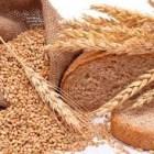 REPORTAJE. El trigo, alimento de comunidades mixtecas