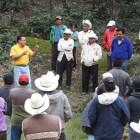 Ocupa Mixteca tercer lugar en incendios forestales