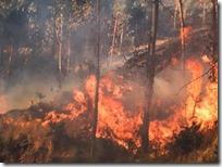 Conflicto agrario dificulta atender incendio en Mixtepec